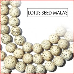 Lotus Seed Malas (12)