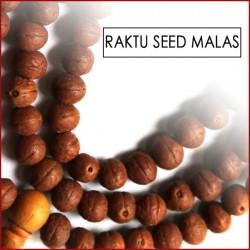 Raktu Seed Malas (12)