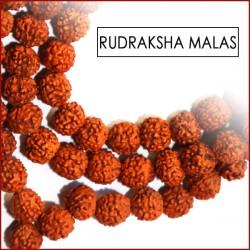 Rudraksha Seed Malas (25)