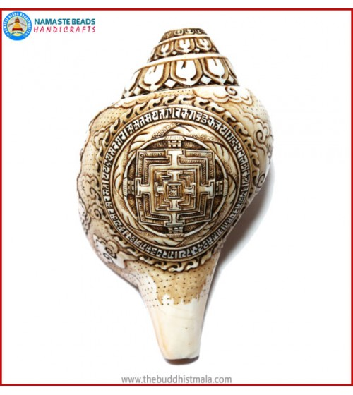 """Mandala"" Carved Natural Conch Shell"