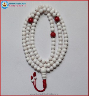 Conch Shell Mala With Coral Spacer Beads
