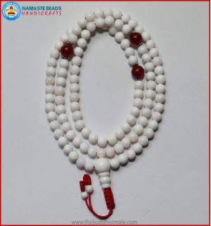 Conch Shell Mala With Carnelian Spacer Beads