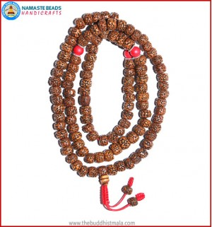 Smooth Brown Rudraksha Seed Mala with Coral Beads