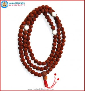 Rudraksha Seed Mala with conch Shell Spacer Beads