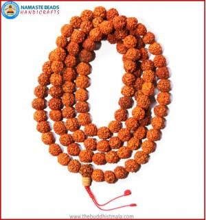 Rudraksha Seed Mala